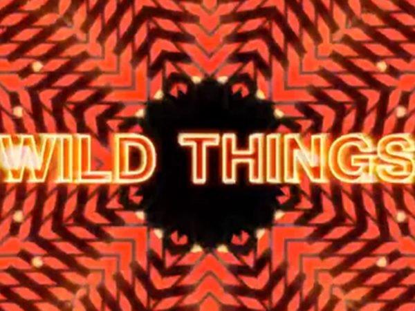 Ladyhawke – Wild Things